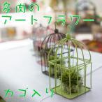 花ギフト アートフラワー 造花 カゴに入った多肉植物のフェイクグリーン 光触媒加工