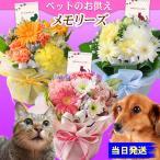 フラワーアレンジメント ペット 花 ギフト プレゼント ペットのお供えアレンジメント メモリーズ  カラーが選べる2500円