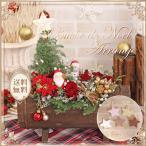 送料無料 クリスマス フラワーアレンジ クリスマスツリー クリスマスギフト プレゼント ギフト 生花 ブッシュドノエル アレンジ