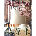 米 10kg お米 淡路島 鮎原米 キヌヒカリ 令和元年新米 鮎原産100%精米 送料無料 受注生産