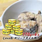 岩手県産 さば缶詰 オリーブオイル漬け 170g×6缶 サヴァ缶 Cava缶 国産 サバ缶 鯖缶 送料無料 2018年 今年の一皿