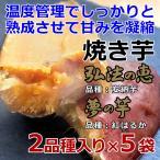 焼き芋 2品種入り×5袋 安納芋 紅はるか 弘法の恵 夢の芋 さんわ農夢 香川県 産地直送 さつまいも サツマイモ 蜜芋 みつ芋 熟成芋 送料込