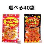 ミミガージャーキー ノーマル&激辛 から 選べる40袋セット 沖縄ハム オキハム