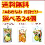 蒟蒻ゼリー JAおきなわ 選べる24個セット シークワーサー タンカン パインアップル 130g