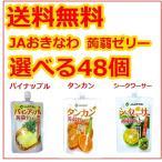蒟蒻ゼリー JAおきなわ 選べる48個セット シークワーサー タンカン パインアップル 130g