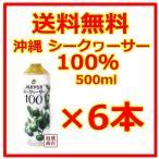 シークヮーサー シークワーサージュース 100% 原液 JA沖縄  500ml  6本セット  青切り