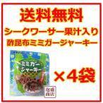 酢昆布ミミガージャーキー  10グラム  4袋セット   シークワーサー果汁入り  オキハム 沖縄ハム