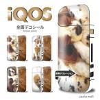 iQOS シール【ワンちゃん 犬 寝顔 かわいい ボストンテリア 柴犬 パグ】アイコス シール