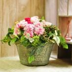 ロマンティックピンクのプリザーブドフラワーアレンジメント 「Sucrer」 大きいサイズ