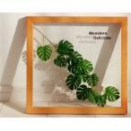 リーフパネル 絵画/モンステラ デリシオサ3 ナチュラルフレーム/絵画 壁掛け 壁飾り インテリア 油絵 花 アートパネル ポスター 絵 額入り リビング 玄関