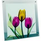 レントゲンアート X RAY ガラス アート「チューリップ(Mサイズ)」/絵画 壁掛け 壁飾り インテリア