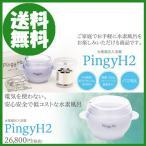 水素風呂入浴器 PingyH2  【即納】