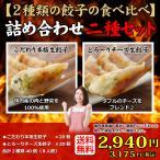 送料無料 28%OFF (2種類40個入り) 8人前 冷凍餃子 本格手造り 生餃子 詰め合わせ セット 餃子 ぎょうざ ギョーザ ギョウザ