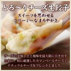 本格手造り 生餃子 (とろーりチーズ生餃子30個入り) お取り寄せ グルメ 餃子 ぎょうざ ギョーザ ギョウザ