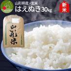 お米 はえぬき 30kg   玄米 山形県産 平成29年産 米 こめ ポイント消化 産地直送