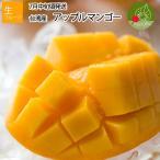 高級 アップルマンゴー 約1kg (約2〜3玉前後)  台湾から直輸入 台湾産 マンゴー 送料無料 お中元