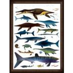 Pliosaurus Marine Life(アーティスト不明) 額装品 ウッドハイグレードフレーム
