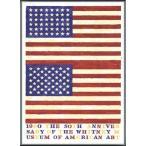 ポスター アート Whitney Museum of American Art 50th Anniversary(ジャスパー ジョーンズ) 額装品 アルミ製ベーシックフレーム