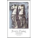 ポスター アート 夜空の中のふたつのヴィーナス(ジム ダイン) 額装品 アルミ製ハイグレードフレーム