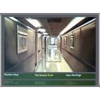 ポスター アート The Elusive Truth Hospital Corridor 限定1000枚(ダミアン ハースト) 額装品 アルミ製ハイグレードフレーム