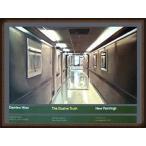 ポスター アート The Elusive Truth Hospital Corridor 限定1000枚(ダミアン ハースト) 額装品 ウッドハイグレードフレーム