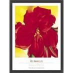 Red Amaryllis 1937(ジョージア オキーフ) 額装品 ウッドベーシックフレーム