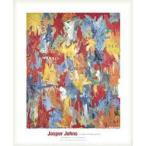 False Start 1959(ジャスパー ジョーンズ) 額装品 ウッドベーシックフレーム