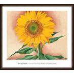 ポスター アート Sunflower from Maggie 1937(ジョージア オキーフ) 額装品 ウッドハイグレードフレーム