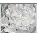 The White Calico Flower  1931(ジョージア オキーフ) 額装品 アルミ製ベーシックフレーム