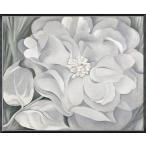 The White Calico Flower  1931(ジョージア オキーフ) 額装品 アルミ製ハイグレードフレーム