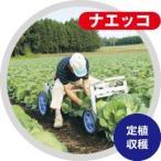 乗用植付け・収穫兼用作業車 (キャベツの植付け・収穫等に)