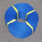 ポリロープ4ミリ(ブルー)  2mカット品