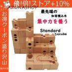 天才脳を育てた藤●四段のおもちゃ WoodEncube社の立体パズル(standard)60キューブ ビー玉10個 ビー玉転がし積み木