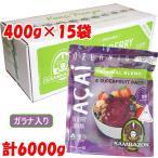 アサイー 冷凍ピューレ ガラナシロップ入り サンバゾン100g×4パック×15袋