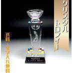 優勝カップ 優勝杯 トロフィー 送料無料 記念品名入れプレゼントのビブレス