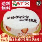 ショッピング誕生日 誕生日ケーキ バースデーケーキ メッセージ 大阪ヨーグルトケーキ5号 15cm 父の日 プレゼント