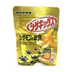 D-1  送料無料  ★味覚糖 シゲキックス エボリューションソーダ 20g 5個セット★ ペイペイ消化