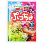 ネコポス  送料無料 ★味覚糖 ぷっちょ袋 4種アソート ★2袋★(98g x2袋)