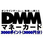 コード送り専用 DMMマネーカード (ポイントコード) 3000円 (3000ポイント)ポイント消化に