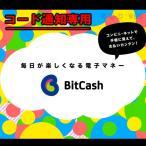 Yマネー可 コード通知専用 ビットキャッシュ (BitCash) 3000円分 ポイント消化に