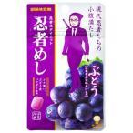 DM便  ★味覚糖 忍者めし 7種類から3個セット★ ポイント 消化 500円