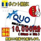 ネコポス発送 送料無料 美品 QUOカード 10000円分(クオカード 金券 商品券 ポイント消化)