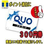 美品 QUOカード 300円券  (クオカード 金券 商品券 ポイント消化)