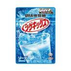 D-1  送料無料 ★味覚糖 シゲキックス 4つの味 食べ比べ 4個セット★ ペイペイ消化