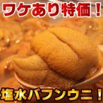 【ワケあり】生蝦夷バフンウニ 冷凍品ではありません 無菌塩水パック!! 1パック[約100g](北方四島産)!注文日より3営業日内に発送
