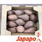 【芋八Japapo正規販売店】安納芋 鹿児島県産さつまいも Sサイズ1.5kg箱 あんのういも (店頭販売の焼き芋をご自宅で。スウィートポテト、やきいも)