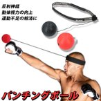 パンチングボール 自宅 通販 ボクシング トレーニング エクササイズ 反射神経 瞬発力 ストレス発散 ストレス解消 動体視力 ボクササイズ