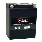 PERFECT POWER LFP14L-A2 リチウムイオンバッテリー 互換 YUASAユアサ YB14L-A2 FZX CB750  FZR750 CB750Four CB750F インテグラ カスタム FJ1100 XJ750