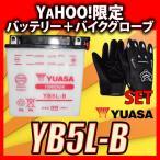 グローブ付! YUASAユアサ YB5L-B 互換 FB5L-B 12N5-3B GM5Z-3B RZ125 TZR125 TZR250 TDR250 R1-Z SRX400