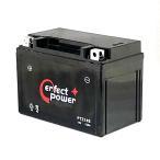 パーフェクトパワー 充電済バッテリー